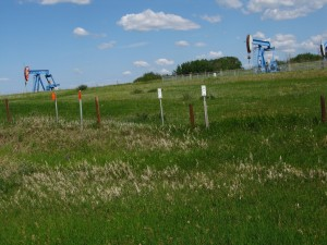 derricks and pipeline signs