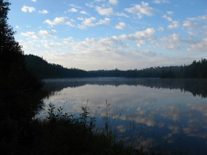 The view over our little lake in the morning